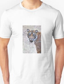 Young Male Tiger Closeup Unisex T-Shirt