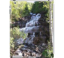 Silverstairs Montana iPad Case/Skin