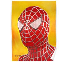 The Amazing Spiderman! Poster