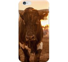 Close Encounter of the Bovine Kind iPhone Case/Skin