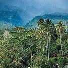 Mt Agung Canyon by JohnKarmouche
