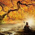 Zen Garden by Cliff Vestergaard
