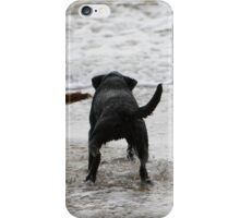 Two dogs paddling  iPhone Case/Skin
