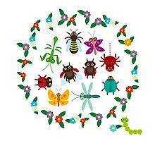 Funny insects circle Photographic Print