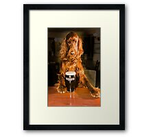 Irish seter with pint of stout Framed Print