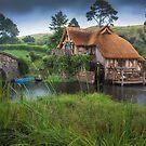 Hobbiton New Zealand 2 by Margaret Metcalfe