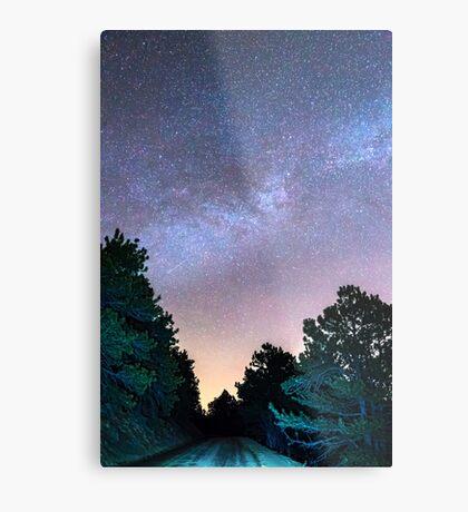 Forest Night Light Metal Print
