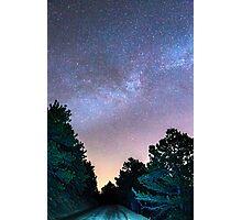 Forest Night Light Photographic Print