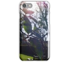 A Warm Winters' Sun at Rowntree Park iPhone Case/Skin