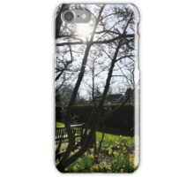 Spring Sun Through the Trees at Rowntree Park iPhone Case/Skin