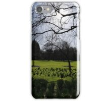 A Sunny Landscape at Rowntree Park iPhone Case/Skin