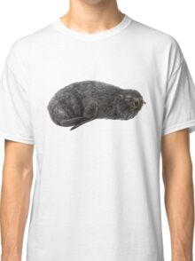 Southern fur seal Classic T-Shirt