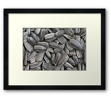 sunflower seeds  macro Framed Print