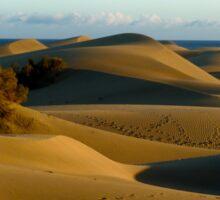 Sunset Dunes Sticker