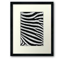 Zebra Style Framed Print