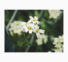 Backyard Blooms- Little White Flowers  One Piece - Long Sleeve