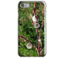 catkins springing iPhone Case/Skin