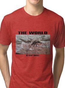 the world Tri-blend T-Shirt
