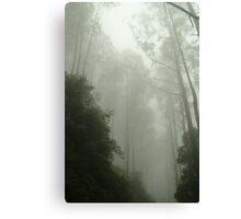 Joe Mortelliti Gallery - Black Spur, gateway to the Mystic Mountains, Victoria, Australia. Canvas Print