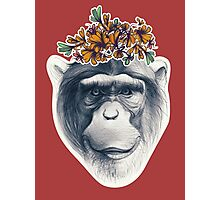 Monkey face with floral composition Photographic Print