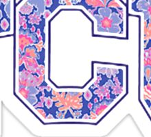 TCU Sticker