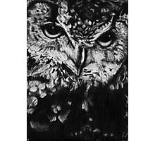 Owl drawing photorealistic Photographic Print