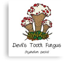 Devil's Tooth Fungus (without smiley face) Canvas Print
