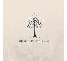The Return of the King // The Lord of the Rings Photographic Print
