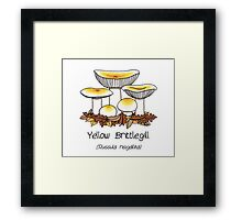 Yellow brittlegill (without smiley face) Framed Print