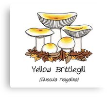 Yellow brittlegill (without smiley face) Canvas Print
