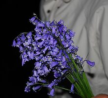 Bunch of Bluebells. by Billlee