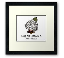 Long-net Stinkhorn (without smiley face) Framed Print