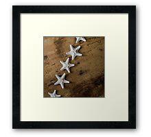 Starfish #10 Framed Print
