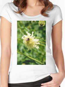 Flower and a Bee Women's Fitted Scoop T-Shirt