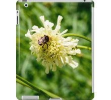 Flower and a Bee iPad Case/Skin