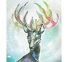 Crystal Stag Photographic Print