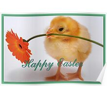 Happy Easter Chick  Poster