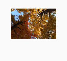 A Vibrant Autumn Duet Unisex T-Shirt