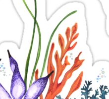 Under the Sea (Weedy Sea Dragon) Sticker