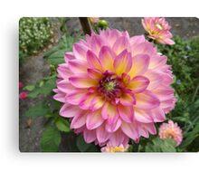 Flower Close-Up, Liberty Community Garden, Lower Manhattan, New York City Canvas Print