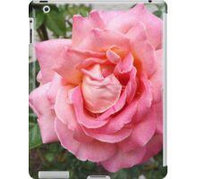 Flower Close-Up, Liberty Community Garden, Lower Manhattan, New York City iPad Case/Skin
