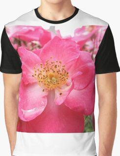 NY June Flower Close-Up, Liberty Community Garden, Lower Manhattan, New York City Graphic T-Shirt