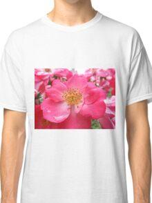 NY June Flower Close-Up, Liberty Community Garden, Lower Manhattan, New York City Classic T-Shirt