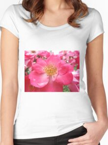 NY June Flower Close-Up, Liberty Community Garden, Lower Manhattan, New York City Women's Fitted Scoop T-Shirt