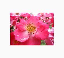 NY June Flower Close-Up, Liberty Community Garden, Lower Manhattan, New York City Unisex T-Shirt