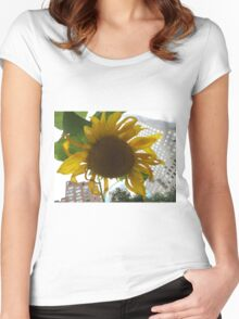 Sunflower Close-Up, Community Garden, Lower Manhattan, New York City  Women's Fitted Scoop T-Shirt