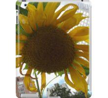 Sunflower Close-Up, Community Garden, Lower Manhattan, New York City  iPad Case/Skin