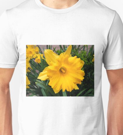 Colorful Spring Flowers, New York City T-Shirt
