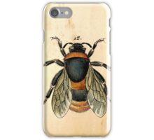 Vintage bee illustration iPhone Case/Skin