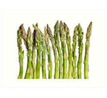 Asparagus Isolated On White Background Art Print